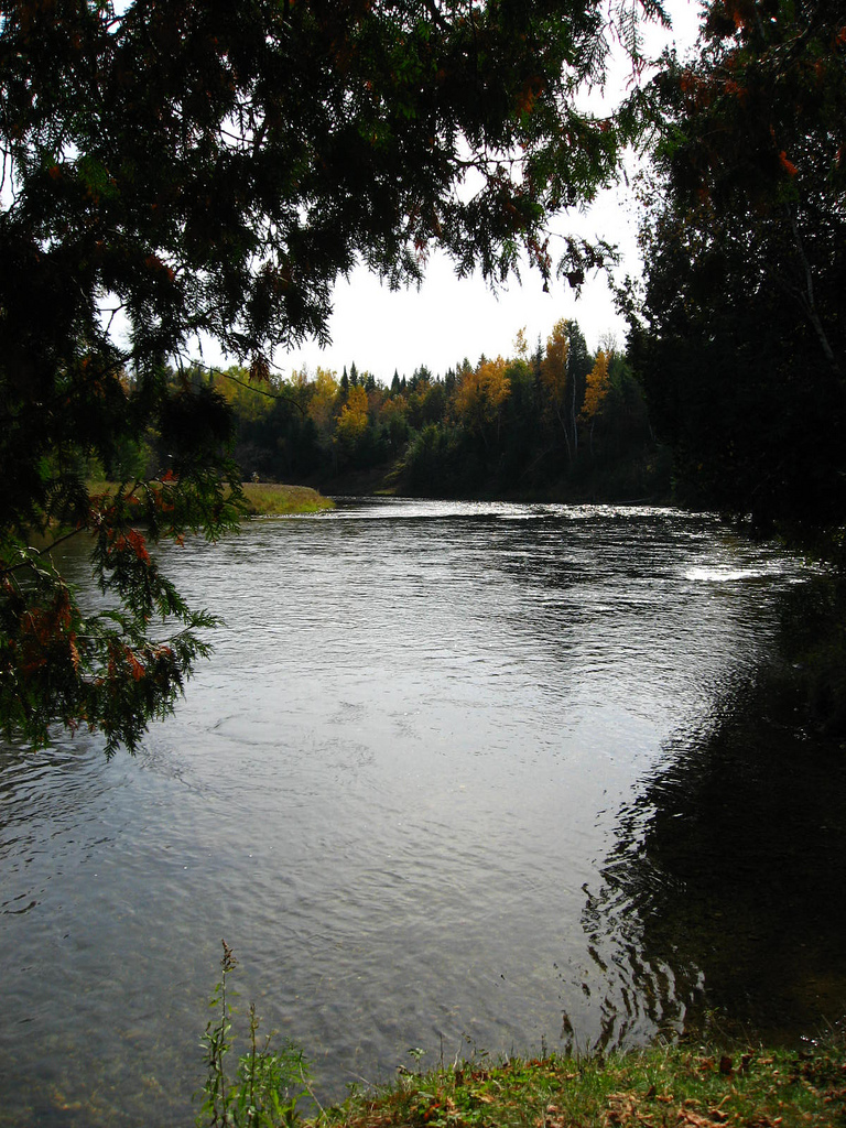The Au Sable River at Thompson's Landing by Linda N.