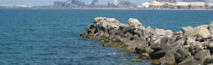 BREAKING: Tar sands oil spills into Lake Michigan by BP