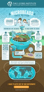 5gyres_microbeads_infographic-2
